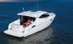 Alcore Marine Maritimo Mustang 43 3